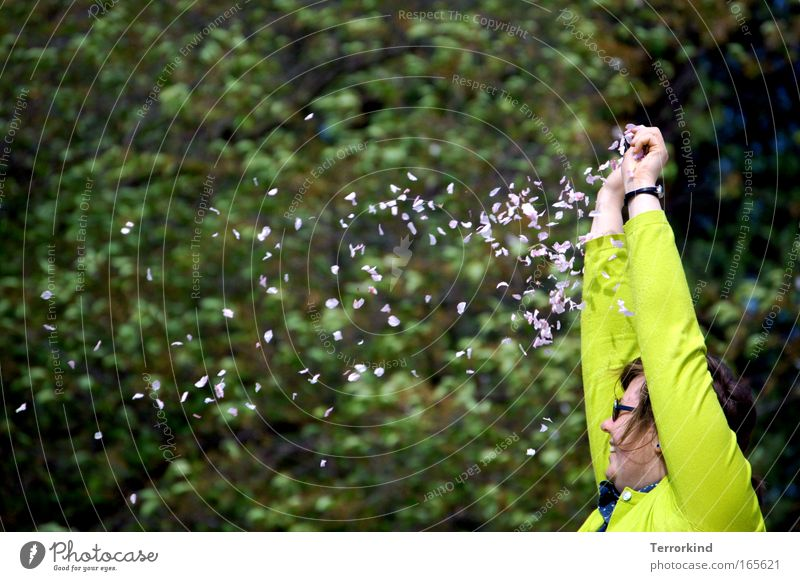 Woman Tree Flower Blossom Lie Sweater Cherry blossom