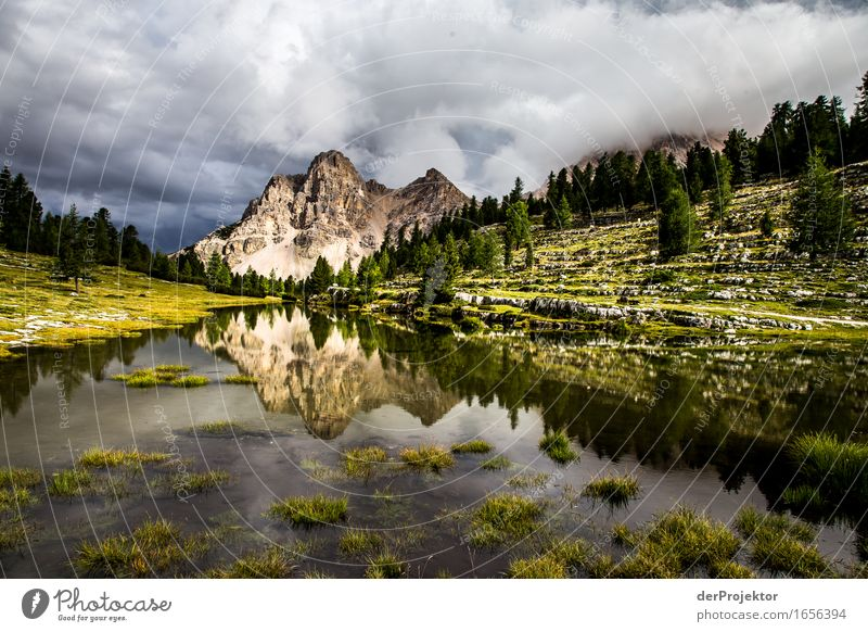 Alm in the Dolomites Vacation & Travel Tourism Trip Adventure Far-off places Freedom Hiking Environment Nature Landscape Plant Animal Summer Bad weather Alps