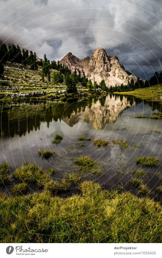 Mountain in a reflection on a mountain pasture in the Dolomites Vacation & Travel Tourism Trip Adventure Far-off places Freedom Hiking Environment Nature