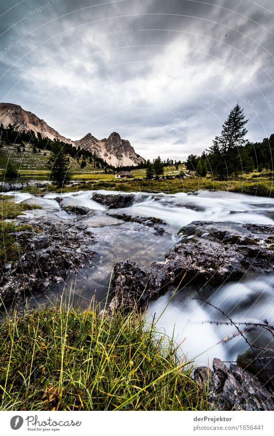 Small stream on the mountain pasture Vacation & Travel Tourism Trip Adventure Far-off places Freedom Camping Summer vacation Mountain Hiking Environment Nature