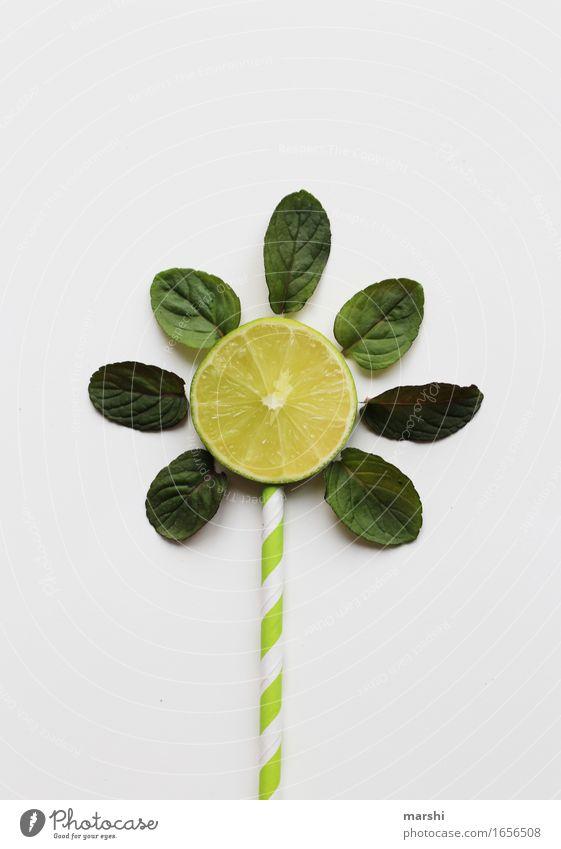 summer drink Food Fruit Nutrition Eating Beverage Drinking Cold drink Lemonade Longdrink Cocktail Emotions Moody Lime Mint Blade of grass Sun Summer Creativity