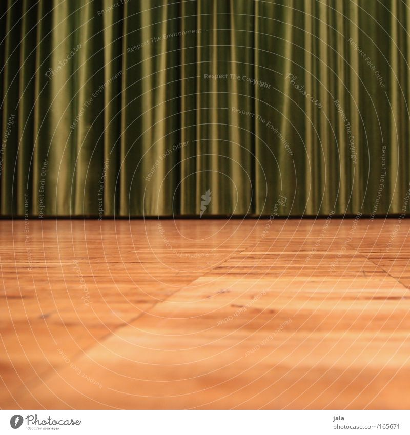 curiosity Colour photo Interior shot Detail Copy Space bottom Artificial light Worm's-eye view Drape Parquet floor Wood Brown Green Floor covering Theatre Stage
