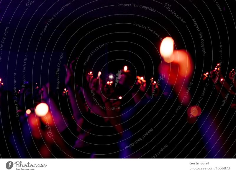 concert Art Event Shows Music Concert Fan Dark Euphoria Romance Moody Lighter Song Colour photo Subdued colour Interior shot Copy Space top Night Shadow
