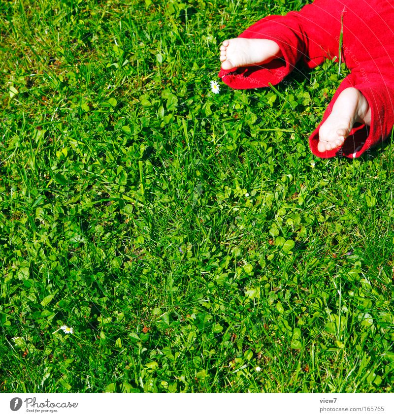 Human being Child Green Red Summer Meadow Life Playing Garden Legs Feet Infancy Baby Natural Lie Fresh