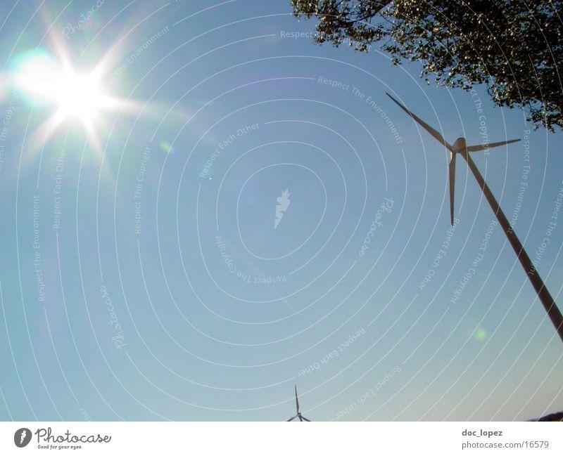 the_sun_against_2 Tree Dazzle Moody Back-light Hissing Sun Wind energy plant Sky Landscape generate alternative energy