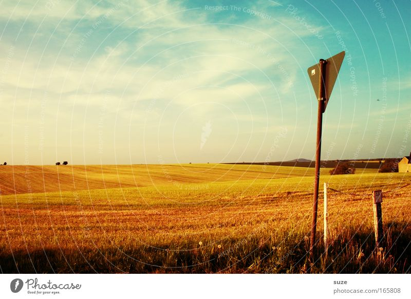 Sky Nature Plant Summer Clouds Calm Environment Landscape Warmth Lanes & trails Field Climate Signs and labeling Signage Break Beautiful weather