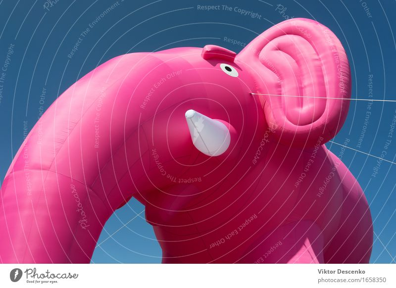 Inflatable pink elephant with white tusks Design Joy Happy Beautiful Decoration Feasts & Celebrations Birthday Balloon Heart Flying Smiling Love Happiness Blue