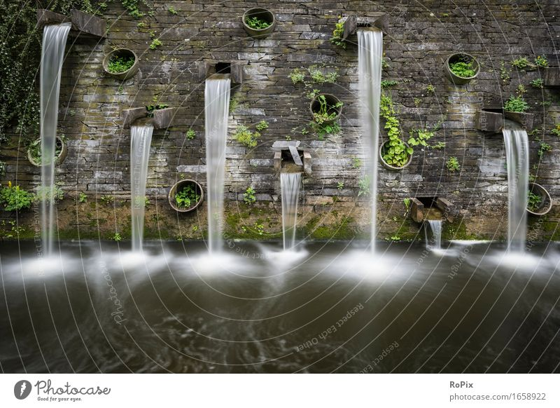 Nature City Plant Green Water Landscape Relaxation Calm Architecture Wall (building) Movement Wall (barrier) Garden Time Gray Stone
