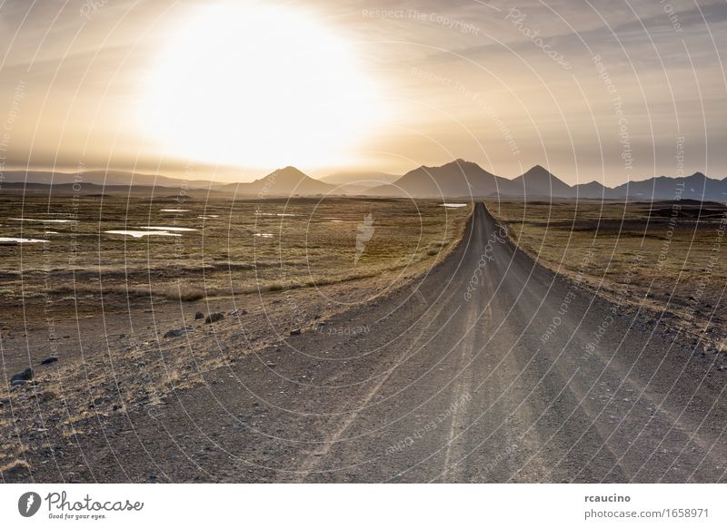 Iceland: empty road in the sub-artic icelandic landscape. Nature Summer Landscape Calm Travel photography Mountain Street Europe Iceland Wilderness Straight Edge