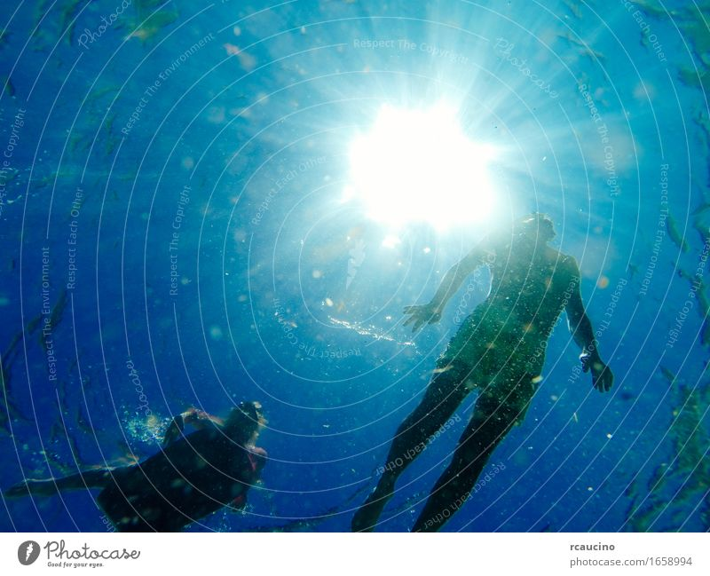 Man swimming in the sea with sunbeams shining through Child Young man Youth (Young adults) 2 Human being Passion Underwater photo Swimming Water Ocean