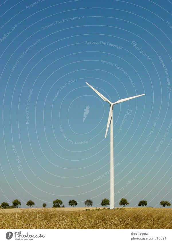 Sky White Tree Blue Far-off places Landscape Moody Field Wind Energy industry Electricity Industrial Photography Longing Wind energy plant Row Rotate