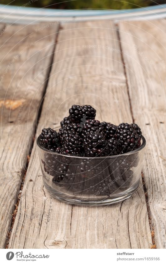 Clear glass bowl of ripe blackberries Plant Red Black Eating Wood Food Fruit Nutrition Glass Organic produce Breakfast Bowl Vegetarian diet Diet Picnic
