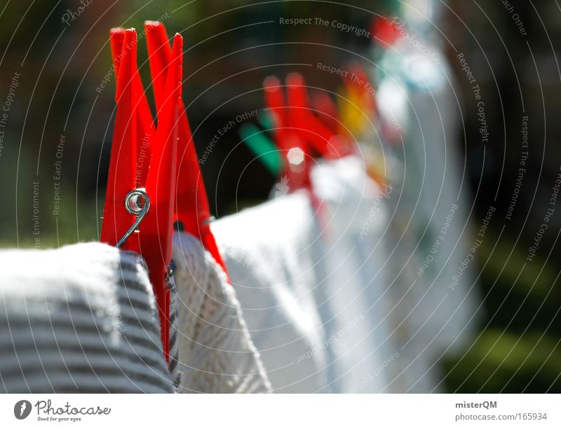 Laundry day. Colour photo Multicoloured Exterior shot Deserted Day Sunlight Shallow depth of field Central perspective Clothing Dry Clothesline Holder