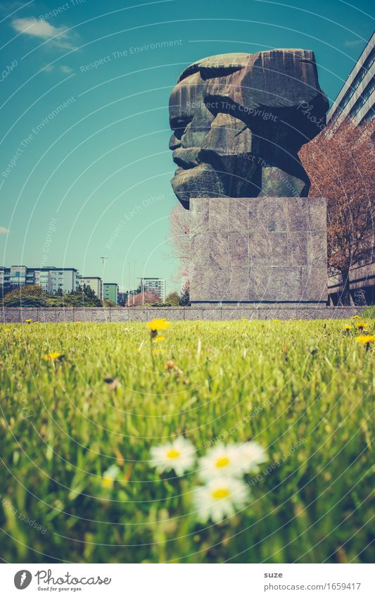 profile picture Environment Nature Spring Flower Blossom Meadow Town Downtown Places Manmade structures Architecture Tourist Attraction Landmark Monument Green