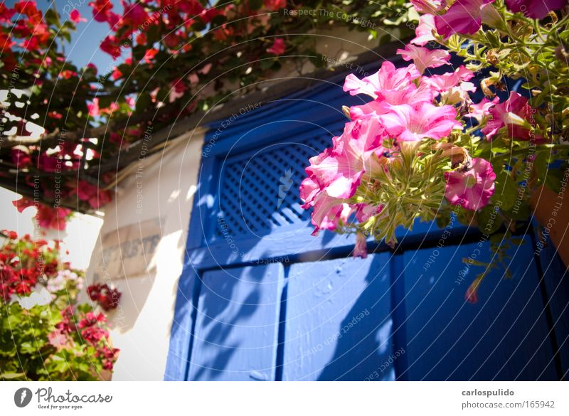 Multicoloured Exterior shot Deserted Morning House (Residential Structure) Terrace Door Colour Culture Art Nature Vacation & Travel Beautiful