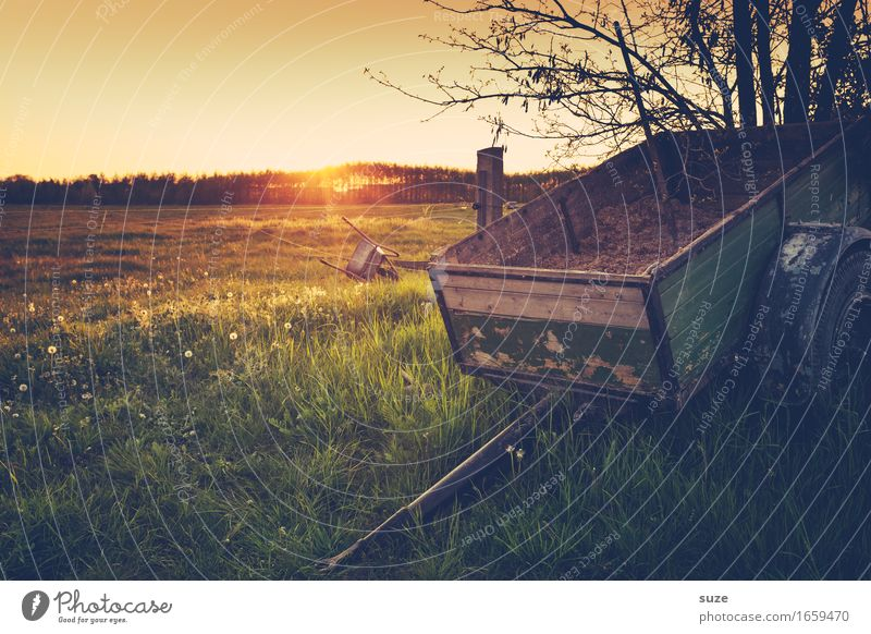 belongings Agriculture Forestry Nature Landscape Plant Summer Grass Meadow Field Trailer Old Moody Romance Idyll Nostalgia Past Transience Carriage Axle