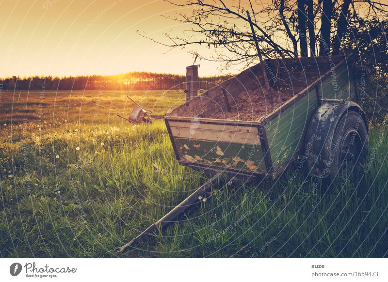 One axle Agriculture Forestry Nature Landscape Plant Summer Grass Meadow Field Trailer Old Moody Romance Idyll Nostalgia Past Transience Carriage Axle