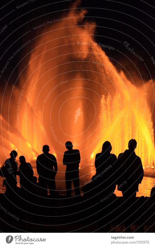 Human being Water Relaxation Air Earth Blaze Hamburg Fire Elements Shows 4 Part Event To enjoy Visual spectacle Night shot