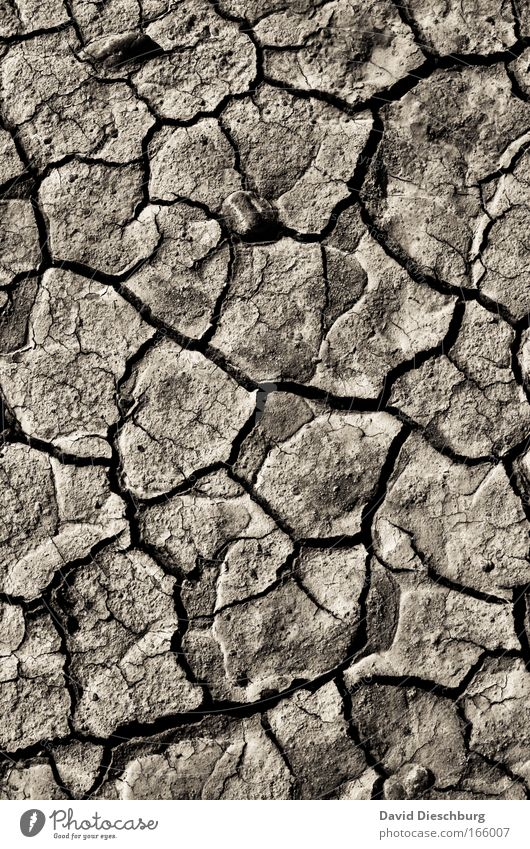 Nature Landscape Sand Line Background picture Rock Earth Natural Wild Desert Dry Crack & Rip & Tear Climate change Drought Torn Sparse