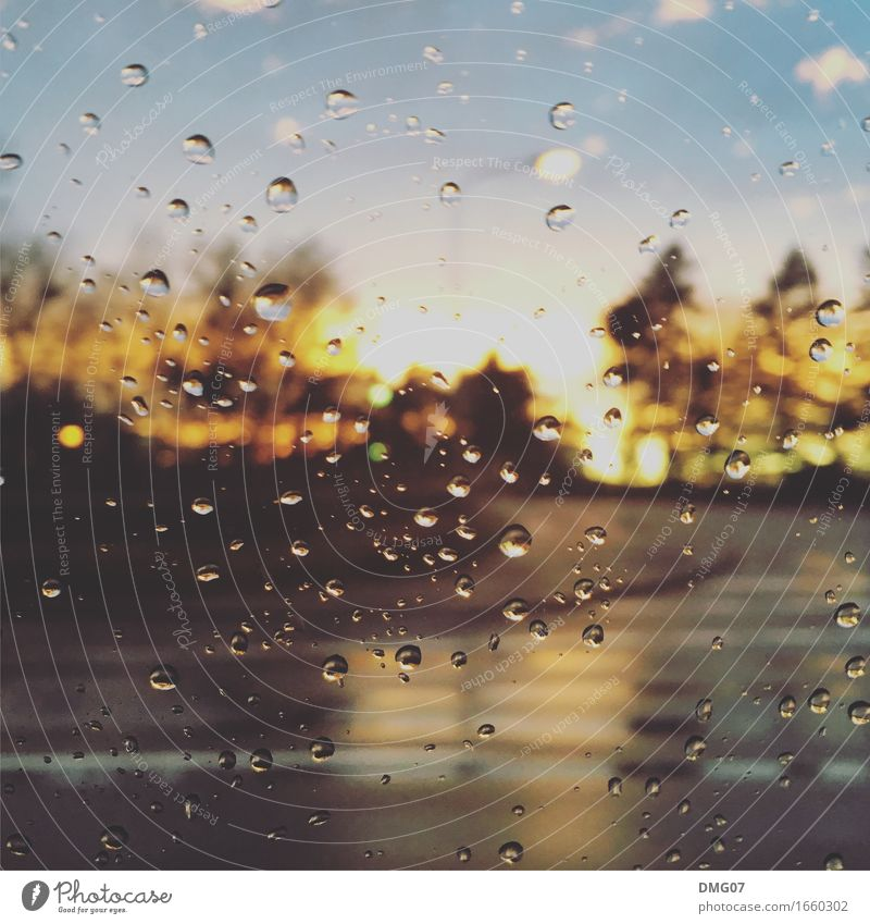 drops Environment Nature Water Drops of water Sky Clouds Spring Summer Autumn Winter Climate Climate change Weather Beautiful weather Bad weather Storm Wind