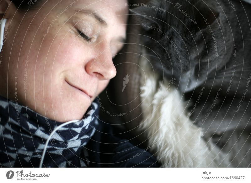loving Lifestyle Living or residing Headphones Woman Adults Face 1 Human being 30 - 45 years Listen to music Pet Cat Domestic cat Animal Smiling Together Cuddly