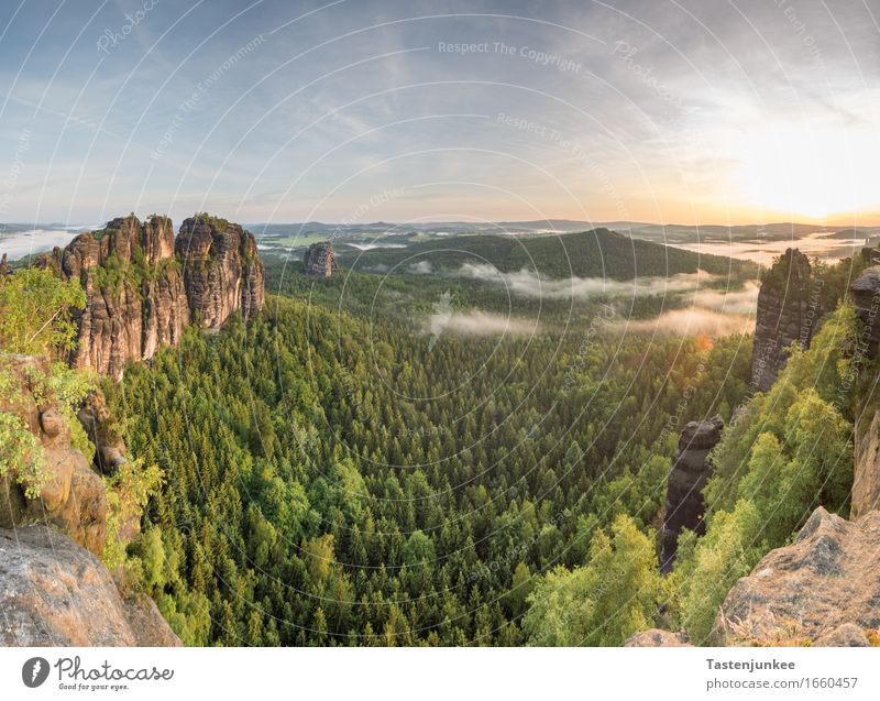 Sky Nature Sun Tree Landscape Forest Germany Rock Fog Hiking Beautiful weather Hill Dresden Elbe Elbsandstone mountains Saxon Switzerland