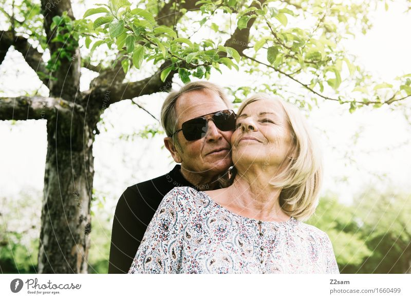 Woman Nature Man Summer Tree Landscape Relaxation Love Senior citizen Natural Lifestyle Healthy Happy Contentment Leisure and hobbies Blonde