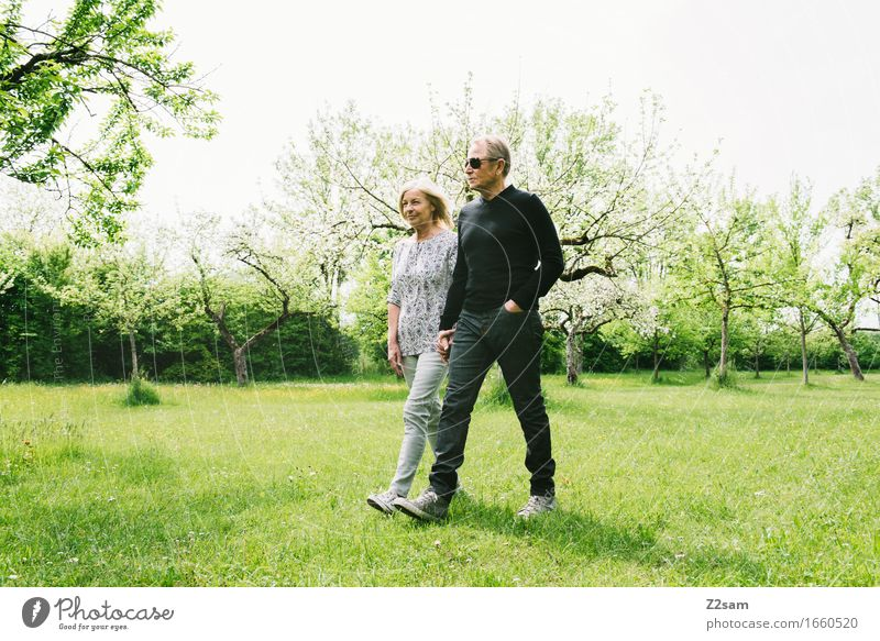 In the orchard Elegant Style Female senior Woman Male senior Man Couple Partner 60 years and older Senior citizen Nature Landscape Spring Summer