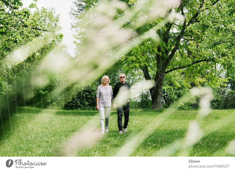 summer walk Lifestyle Trip Freedom Female senior Woman Male senior Man Couple Partner 60 years and older Senior citizen Nature Landscape Summer
