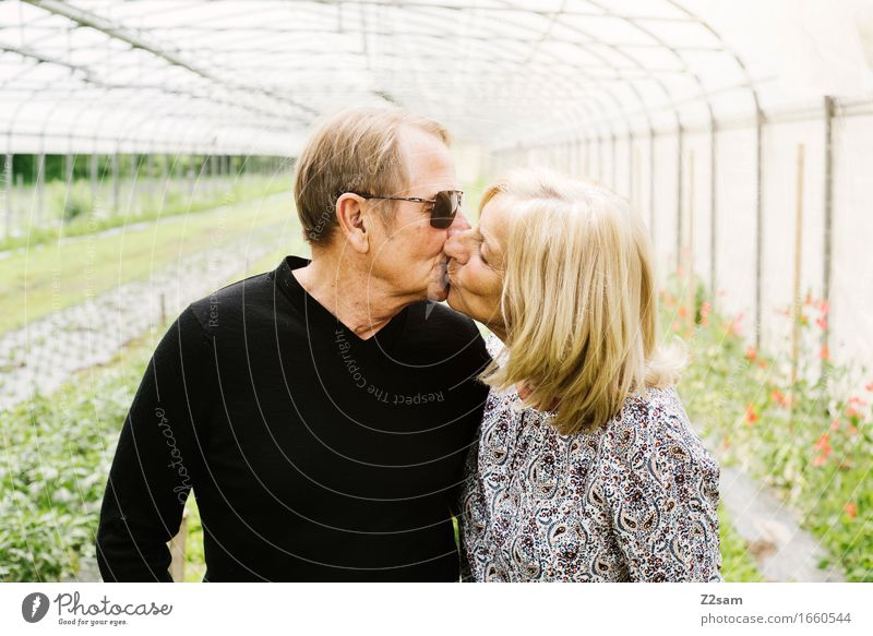 forever Female senior Woman Male senior Man Couple Partner 60 years and older Senior citizen Landscape Summer Beautiful weather Garden Blonde Touch Kissing Love