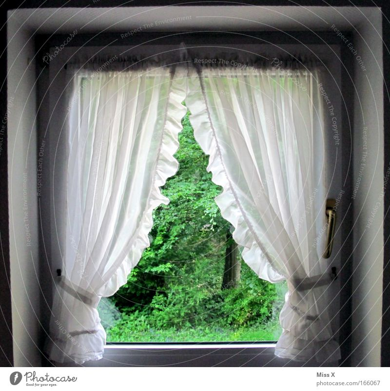 House (Residential Structure) Forest Window Garden Decoration Clean Living or residing Village Idyll Interior design Cloth Drape Curtain Cuddly Dream house Frills
