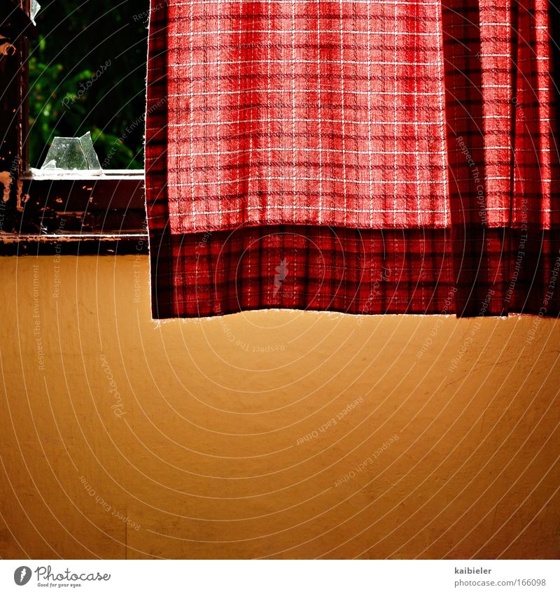 Without gold edge Colour photo Deserted Day Light Shadow Sunlight Back-light Living or residing Flat (apartment) Interior design Curtain Wallpaper Window