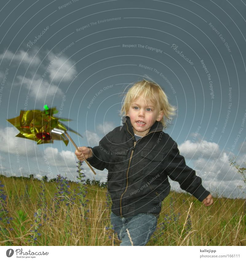 wind power Forward Leisure and hobbies Playing Children's game Toddler Boy (child) Face Hand 1 Human being Environment Nature Landscape Plant Animal Sky Spring
