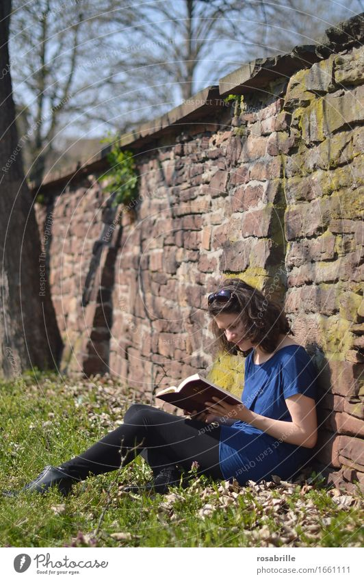 Time in the sunshine - brunette young woman sits in her spare time on a meadow leaning against a sandstone wall and reads the Bible Joy Contentment Relaxation