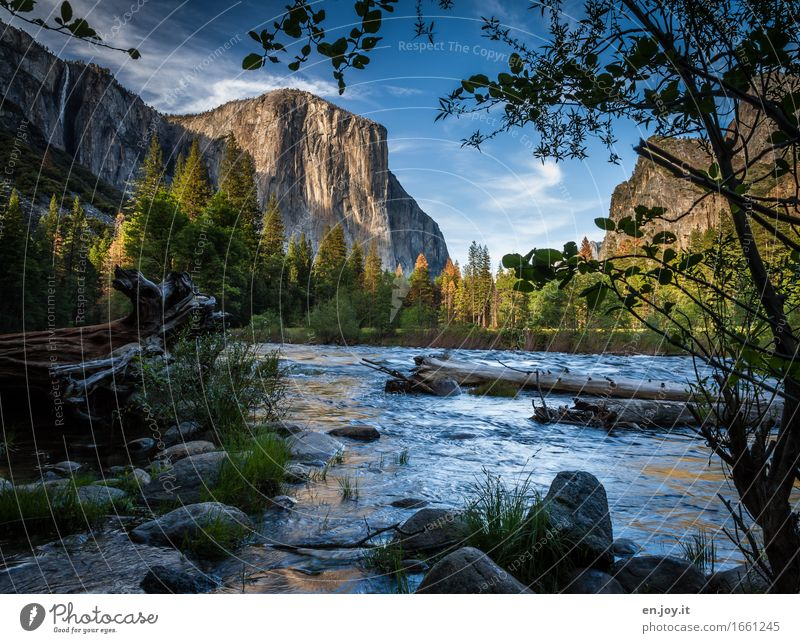 Nature Vacation & Travel Summer Tree Landscape Relaxation Calm Mountain Environment Rock Idyll Trip Beautiful weather Adventure River USA