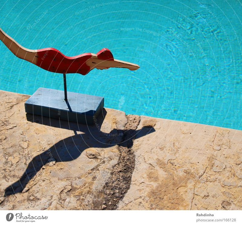 Woman Water Beautiful Blue Red Joy Vacation & Travel Jump Wood Stone Warmth Contentment Art Adults Elegant