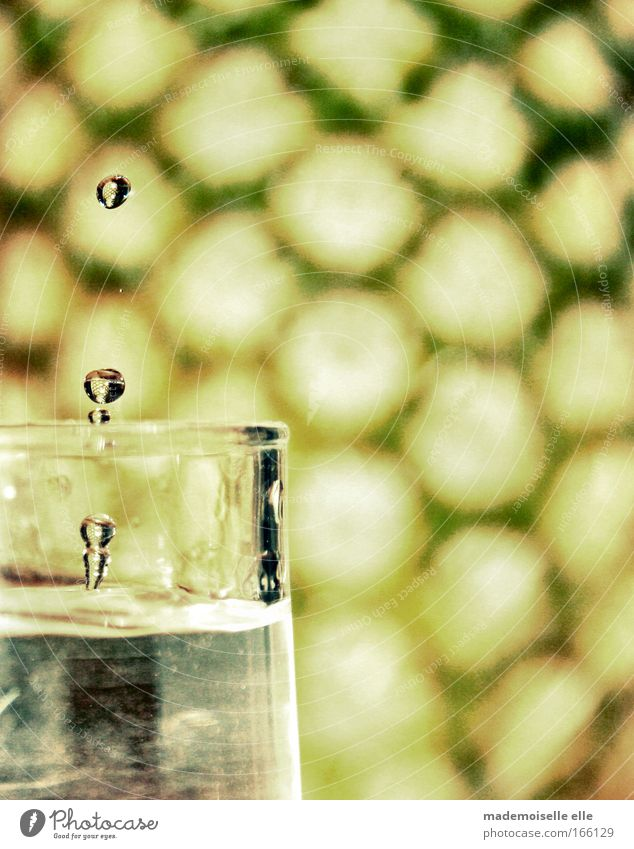 Glass Drops of water Drinking water Wet Round Pure Fluid Stagnating