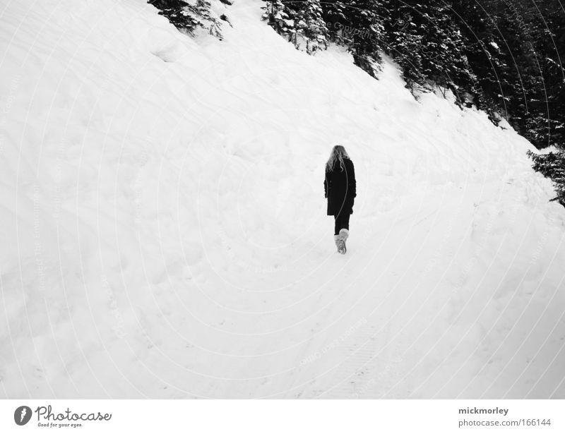Walking into nothing Black & white photo Exterior shot Copy Space left Day Central perspective Forward Harmonious 1 Human being Nature Landscape Winter Ice