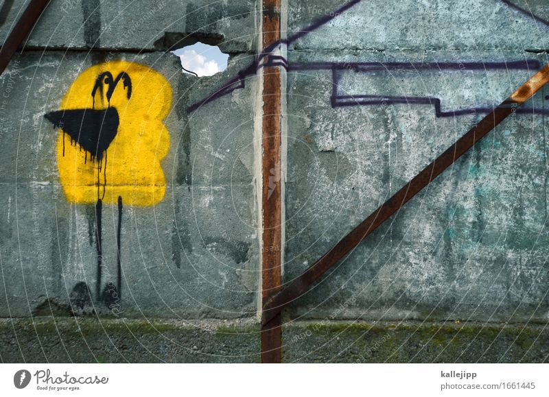 Sky City Clouds Animal Wall (building) Sadness Graffiti Berlin Lifestyle Wall (barrier) Art Think Freedom Bird Culture