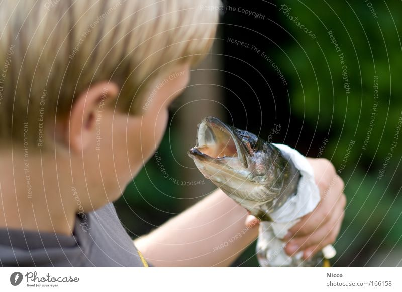 Human being Child Animal Boy (child) Food Eating Infancy Blonde Leisure and hobbies Fish Fish Animal face Catch Fishing (Angle) Smoothness Disgust