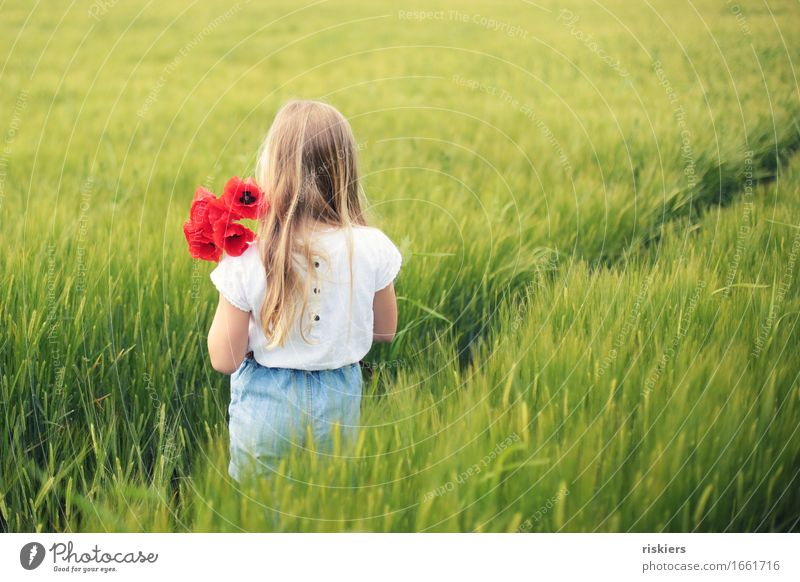 poppy day Human being Feminine Child Girl Infancy 1 3 - 8 years Environment Nature Landscape Spring Summer Beautiful weather Plant Flower Poppy Field Discover