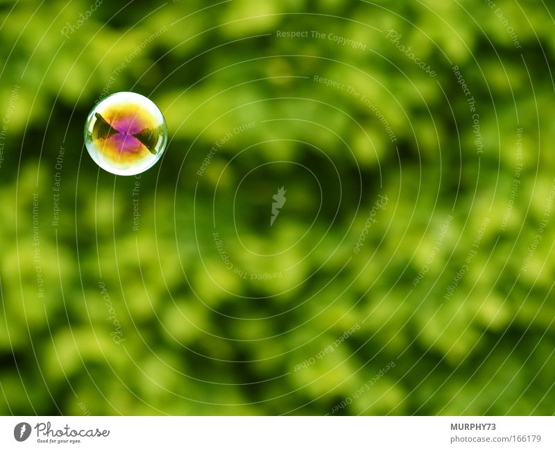 Water Green Joy Colour Playing Garden Air Glittering Free Round Toys Exceptional Sphere Multicoloured Soap bubble Blur