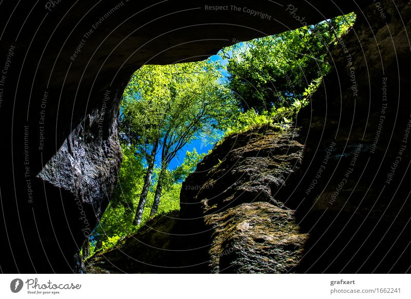 Rocky cave with trees Way out Vantage point Tree Nature Environment Dark Entrance Geology Green Sky Tall Cave Rocky gorge Landscape Opening Portal Canyon Light