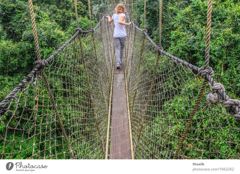 Girl on suspension bridge Vacation & Travel Adventure Rope Feminine Young woman Youth (Young adults) 1 Human being 13 - 18 years Environment Nature Plant Air