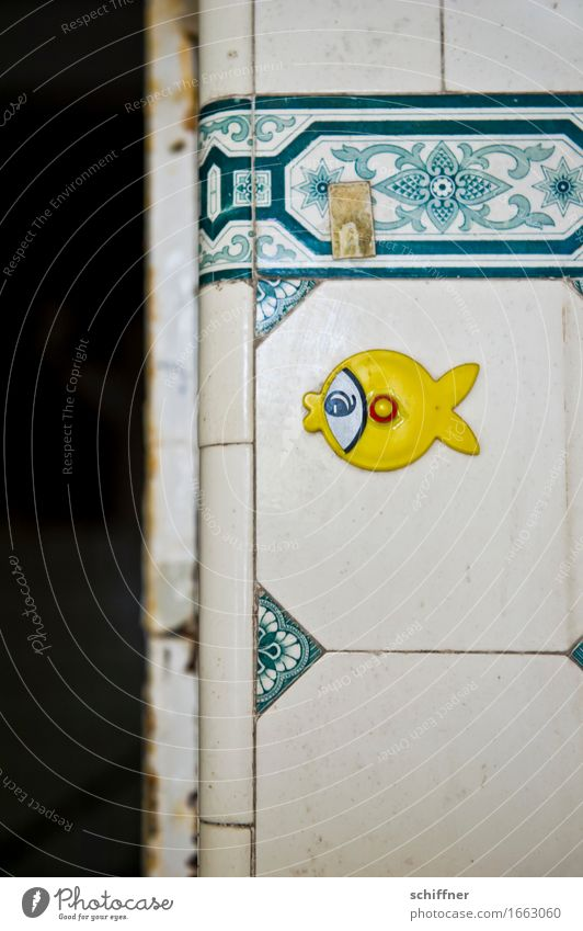 Old Animal Yellow Broken Fish Derelict Decline Tile Label Old fashioned Building for demolition