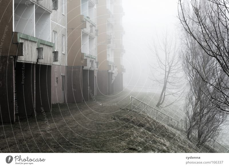Nature Tree Winter Calm Loneliness Life Cold Meadow Emotions Dream Sadness Ice Architecture Flat (apartment) Fog Weather
