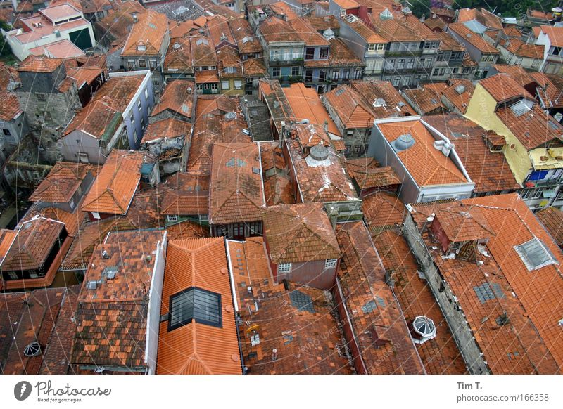 Portos Roofs Colour photo Exterior shot Aerial photograph Deserted Day Bird's-eye view Vacation & Travel Sightseeing City trip House (Residential Structure)
