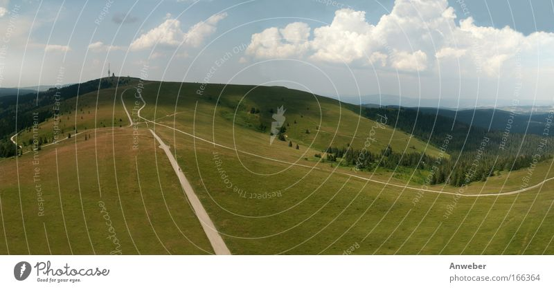 Black Forest Roof - Feldberg from the Seebuck Colour photo Exterior shot Deserted Copy Space bottom Day Sunlight Bird's-eye view Panorama (View) Wide angle