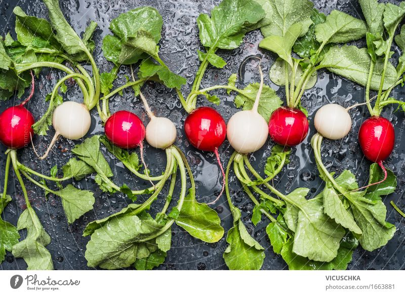 Organic radish from the garden Food Vegetable Nutrition Organic produce Vegetarian diet Diet Style Design Healthy Eating Life Summer Garden Table Nature