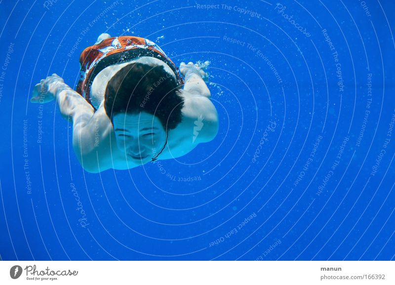 divergent Colour photo Subdued colour Underwater photo Copy Space right Copy Space top Copy Space bottom Copy Space middle Neutral Background Morning Day